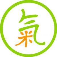 chinskie kody logo