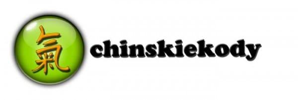 chinskiekodyrabatowe logo