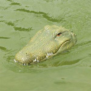 lodka-flytec-krokodyl